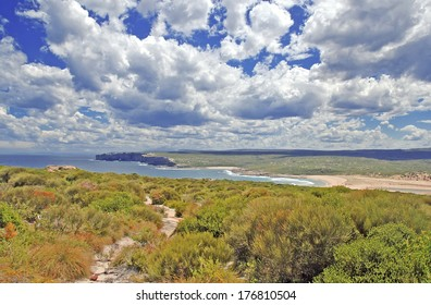 Grassland and Bluffs on Coastal Walking Track near Sydney, New South Wales Australia