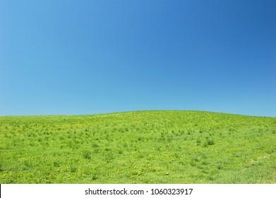Grassland hill landscape - Biei, Hokkaido, Japan