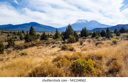 Grassland on mountains in autumn on big mountain with snow background.