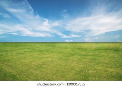 Grassland Scenery of Mongolian Grassland in China