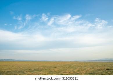 Grassland and sky background