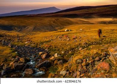 Grasslands of Kazakhstan, Central Asia