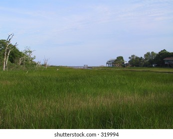 Grasslands on Texas Coastline