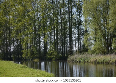 A grassy bank and trees surround the river, Suffolk, England.