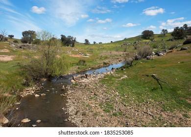 Grassy Creek near Rugby, NSW, Australia