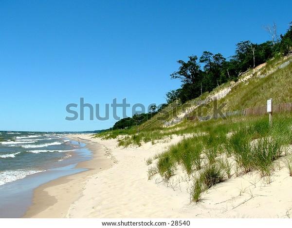 grassy dune on Lake Michigan