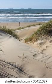 Grassy dunes leading to the ocean. Near Scheveningen in Holland