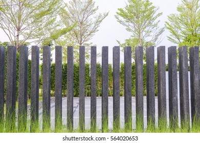 Grassy front fence