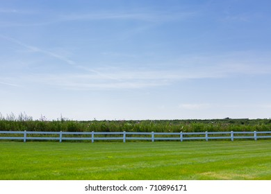 Grassy green lawn with white fence and flowers field in a hot summer day, bright day light blue sky in background.