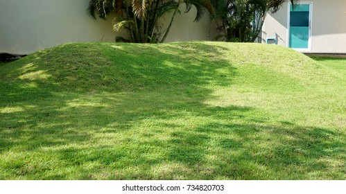 Grassy hill in garden with shadow