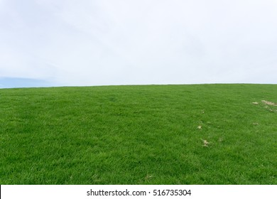 The grassy hill and the sky