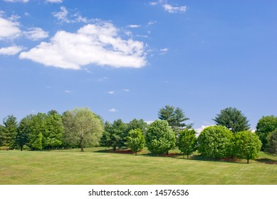 Grassy Hillside Landscape with Green Trees and Partly Cloudy Blue Sky