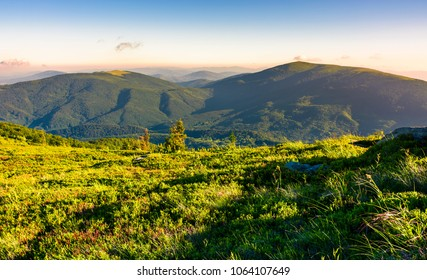 grassy hillside meadow in the morning. two mountains in the distance in beautiful light