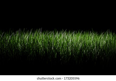 A grassy lawn seen at night, black background