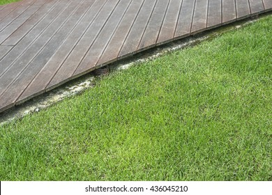 Grassy lawn and wooden flooring, the transition.