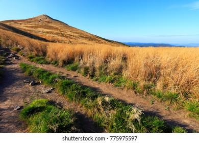 Grassy meadow slopes of the Polonina Carynska hill in Bieszczady Mountains in South East Poland - Bieszczadzki National Park