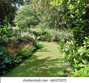 Grassy path between flowerbeds in an English garden