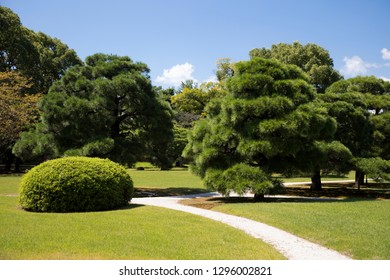 Grassy path through green fields, shrubs and trees in a garden