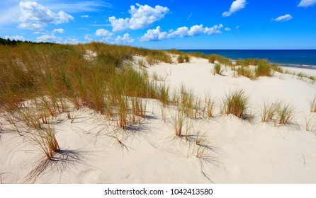 Grassy sand dunes and beach of Baltic Sea central shore near town of Rowy in Poland