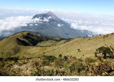 Grassy slopes of mt Merbabu volcano in Indonesia - Yogyakarta, view on Mt. Merapi