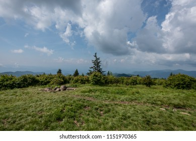 Grassy View from Andrews Bald in the Smokies