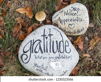 Gratitude  What are you grateful  rock