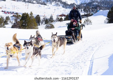 Grau Roig Andorra :  March 2 2018 :  Sledges pulled by dogs in the Grandvalira Station, Grau Roig Andorra.