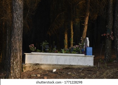 A grave decorated with flowers in a Muslim cemetery full of trees.