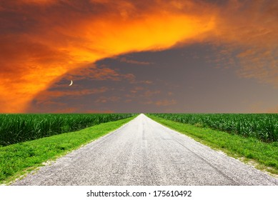 A gravel covered rural road through corn fields at sunset/sunrise with a glowing sky beautiful sky