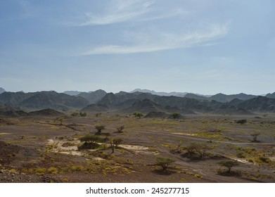 Gravel desert with mountains in background, Oman