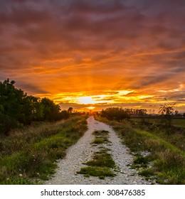 Gravel path with vibrant orange sunset.