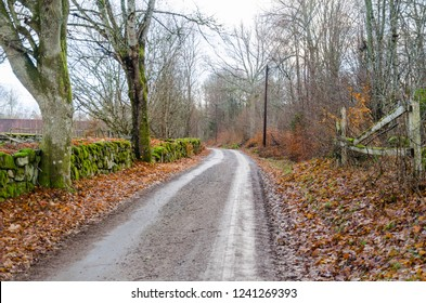 Gravel road by fall season in an old landscape with a moss grown stone wall