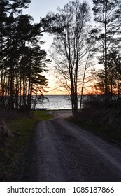 Gravel road to the coast by sunset at the swedish island Oland