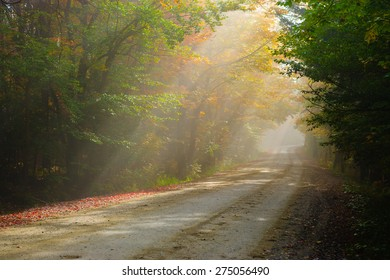 Gravel road in the early morning fog, Stowe, Vermont, USA.