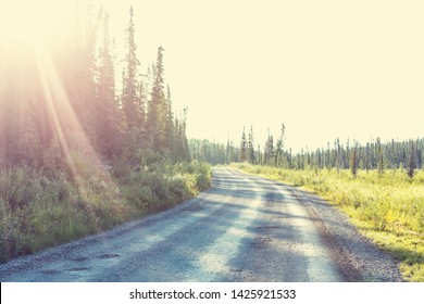 Gravel road in the forest of Alaskan mountains, summer season.