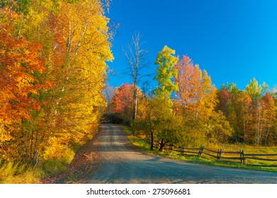 Gravel road on a sunny fall foliage morning, Stowe, Vermont, USA.