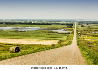 Gravel road through the flat prairies with field and trees across the landscape