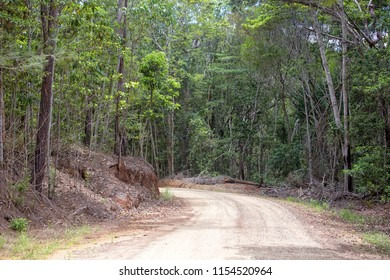 Gravel road through forest on the Atherton Tableland in Queensland, Australia