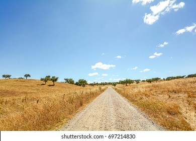 Gravel road through hilly Alentejo landscape with cork oak trees and yellow fields in late summer near Beja, Portugal Europe