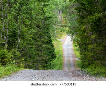A gravel road through the hilly Nordic countryside. Trees both sides, forests.