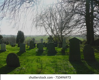 Gravestone in grass with trees