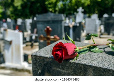 Gravestone with withered rose