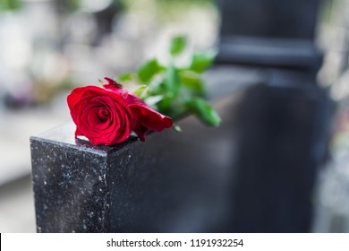 Gravestone with withered rose. Red rose was left on gravestone in the graveyard for someone who passed away. Flower on memorial stone close up. Red carnation on gravestone