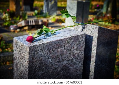 Gravestone with withered rose / Tombstone on graveyard / Sorrow about loss of beloved ones