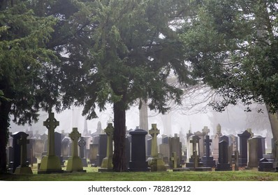 gravestones under the trees in a graveyard with mist in the distance with a grassy green foreground