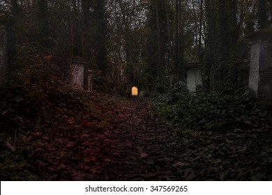 Graveyard in the forest  with fog.
