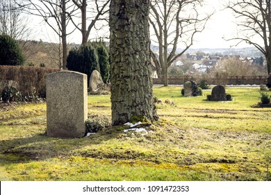 Graveyard with Tombstone and Tree Trunk in Winter