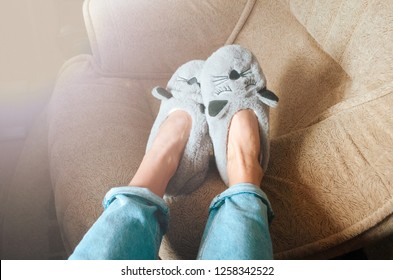 gray cat face slippers