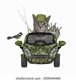 A gray cat fisher drives a car with a metal bucket full of fish. White background. Isolated.