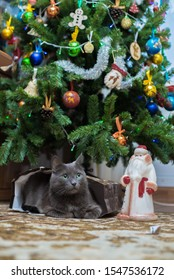 A gray cat lies under a Christmas tree in a gift bag. Nearby is a plastic figure of Santa Claus (Father Frost ded moroz).